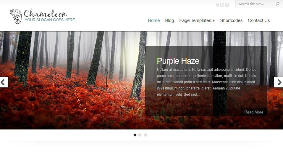 Chameleon WordPress Theme