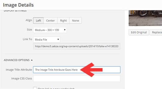 This will bring up the image edit popup screen where you need to click on the Advanced Options. This will display the option to add image title attribute.