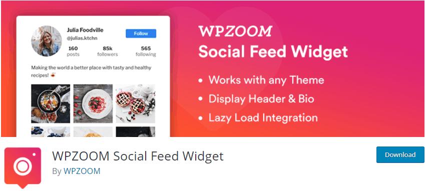 WPZOOM Social Feed Widget